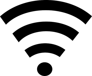 What is an ant radio service